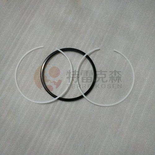 TEREX parts 15021811 RING GT