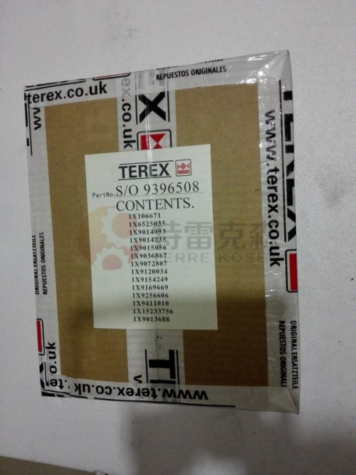 TEREX parts 9396508 KIT CYL
